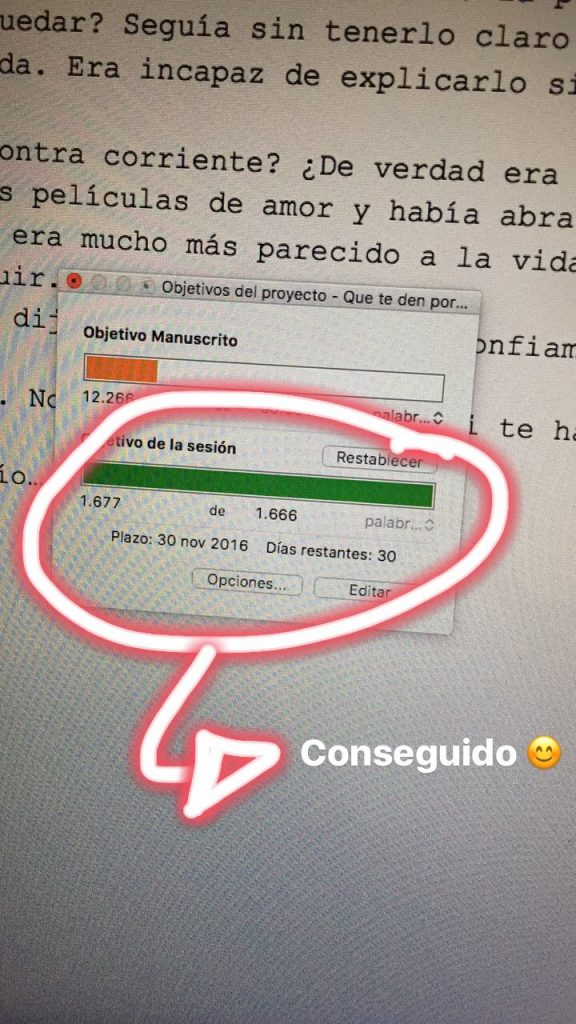 Instagram Stories en NaNoWriMo 2016